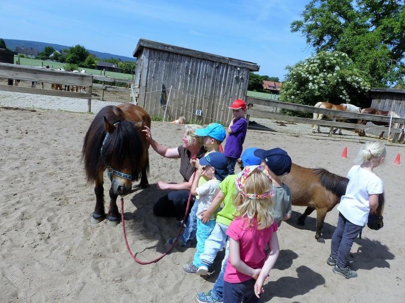 Kita-Kinder besuchen Reiterhof in Langreder